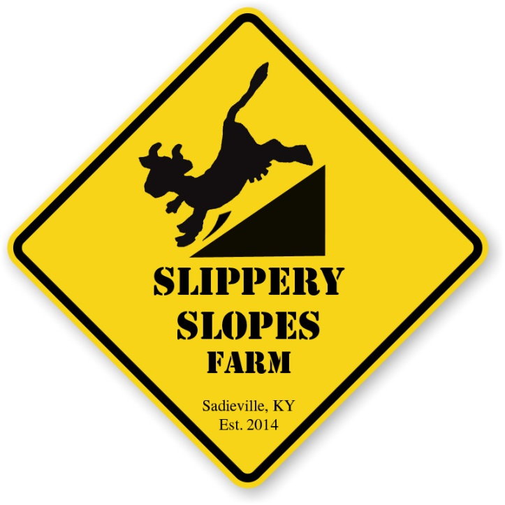 slipperyslopeslogo